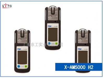 氢气泄漏检测仪X-am5000